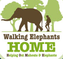 Walking Elephants Home logo