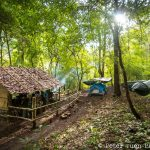 Our new base camp in the forest (photo credit: Peter Yuen Photography)