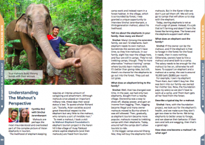 "Screenshot of article in ""Elephants in Asia, Ethically"""